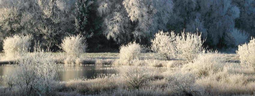 Naturschutzgebiete Rahden