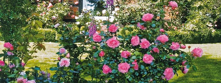 Gartentouren